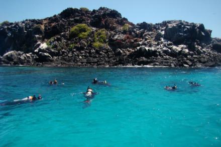 Diving at Punta Pitt