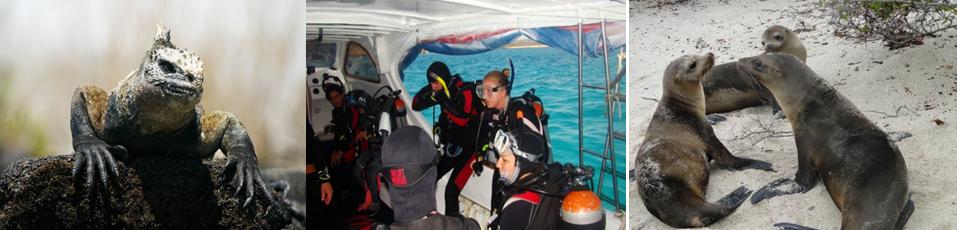 Galapagos Best Diving Program
