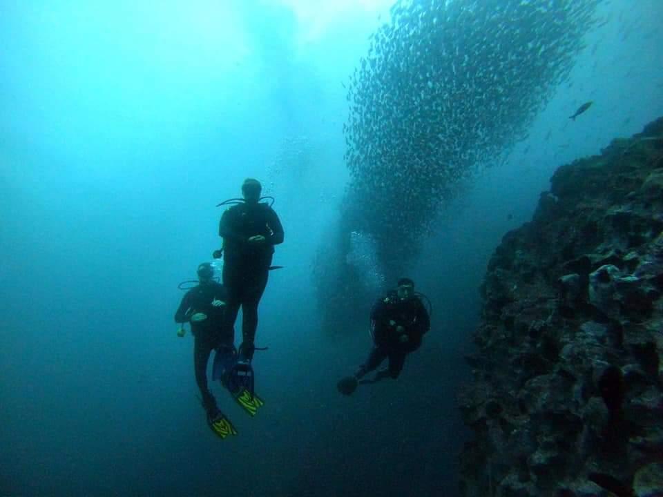 Diving in Galapagos Islands Ecuador